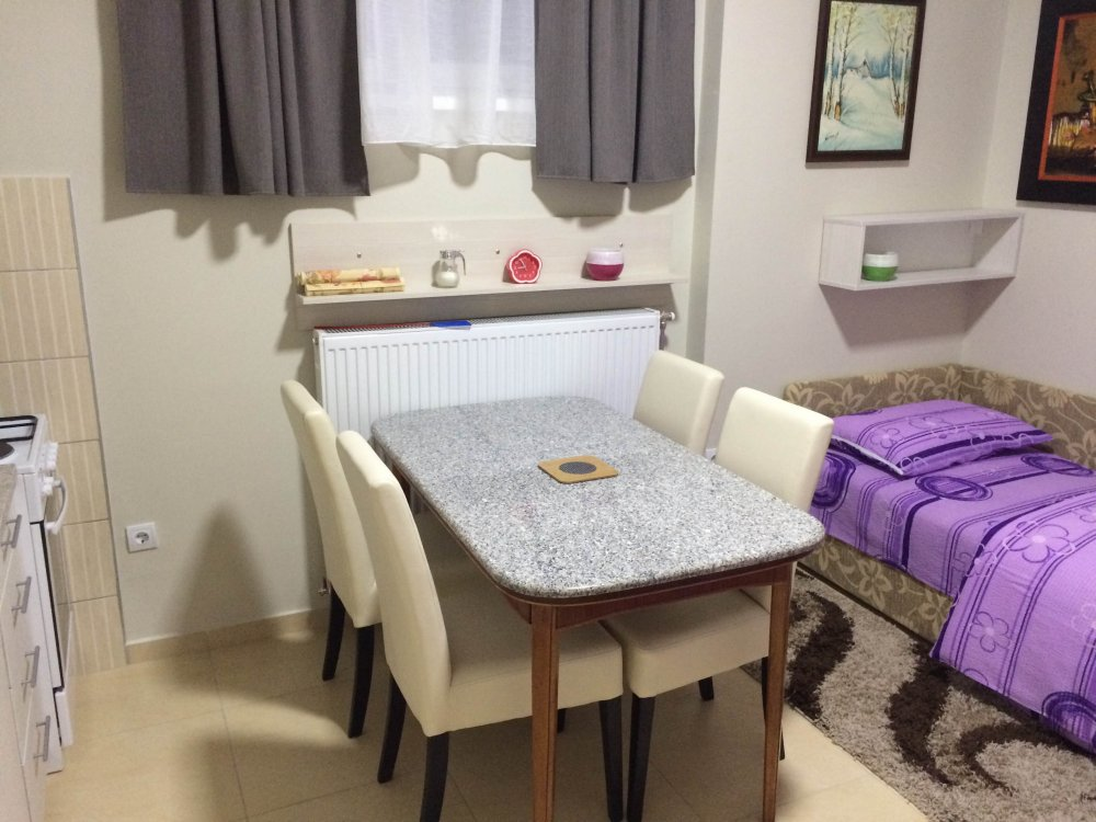 Apartman sa kuhinjom