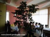 Hotel TOPLICA