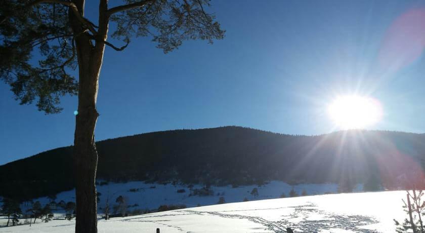 online rezervacije Brvnara Magnolija