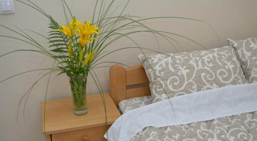 online rezervacije Guest House Konak Iris