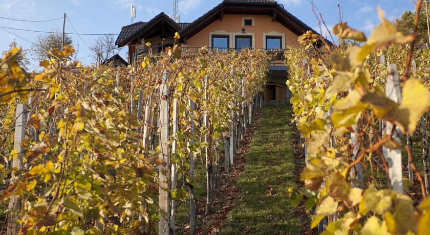 online rezervacije Vineyard Cottage Bregac