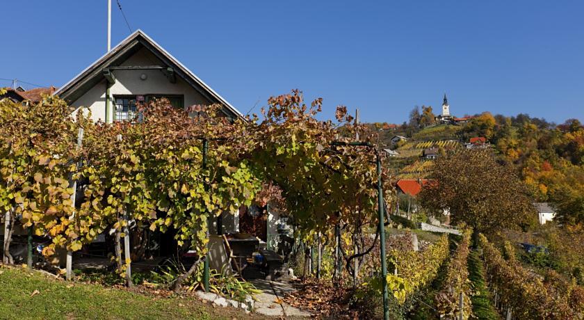 online rezervacije Vineyard Cottage Vercek